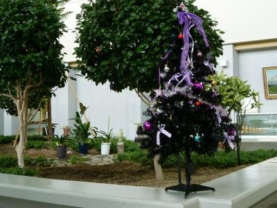 20131204クリスマスの飾り-1