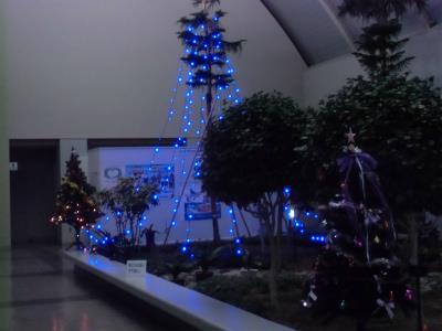 20131204クリスマスの飾り-7