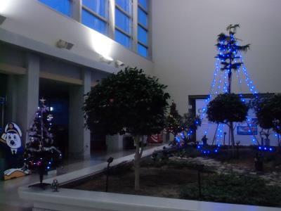 20131204クリスマスの飾り-8