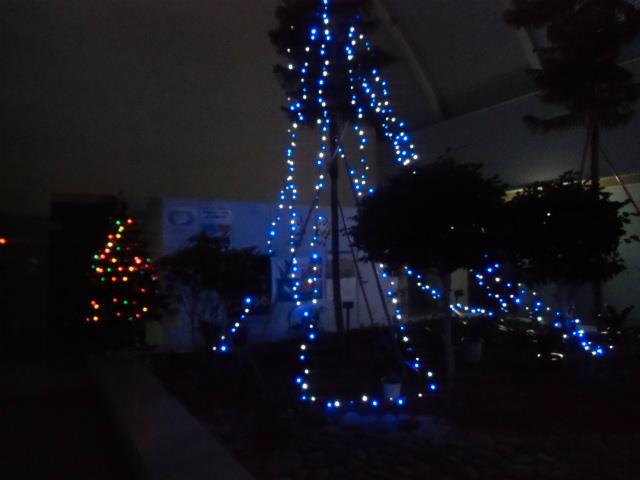20141120クリスマス-3